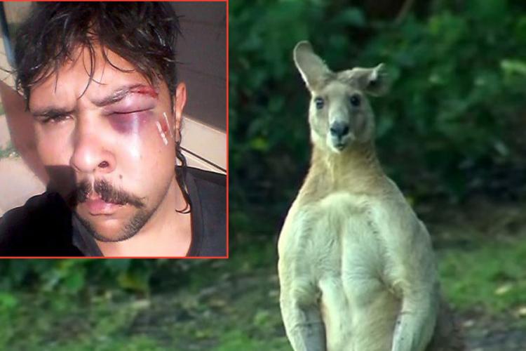 Mladić pošao u lov, pretukao ga kengur