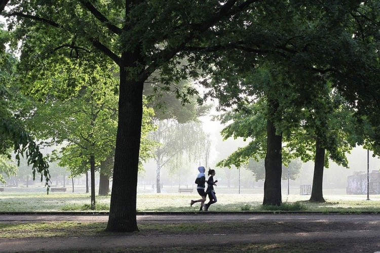 Kako do boljeg imuniteta: Rješenje je trčanje, brzo hodanje...